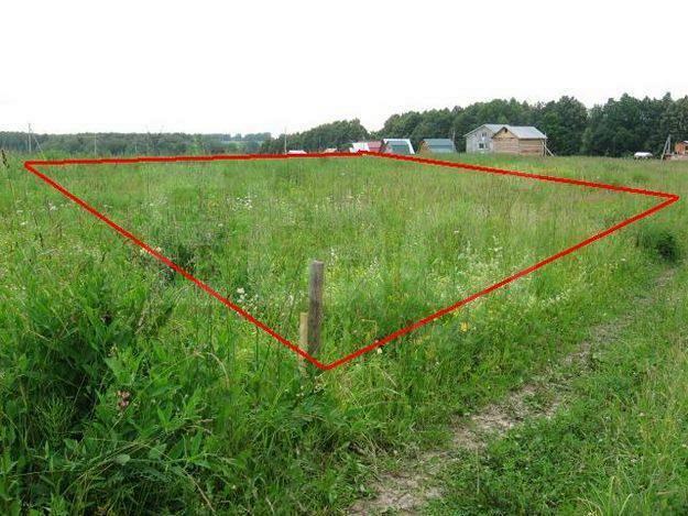 Что надо учитывать при покупке земельного участка? Кадастр
