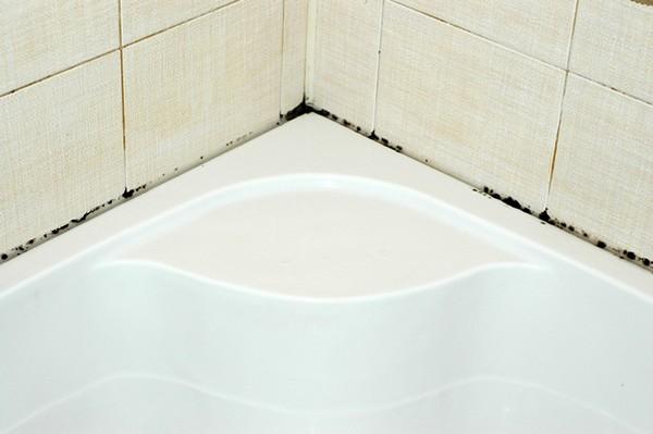 Как правильно и навсегда избавиться от плесени в ванной комнате и туалете
