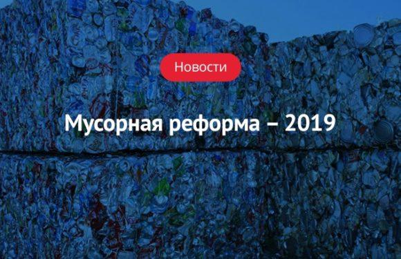 Новая строка в платежке: как начисляют плату за вывоз мусора